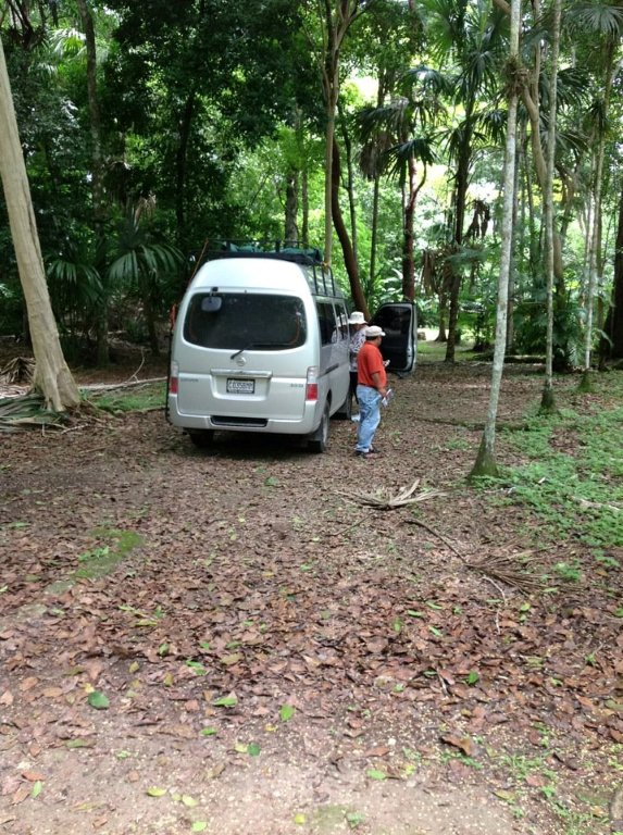 Touring Tikal Ruins